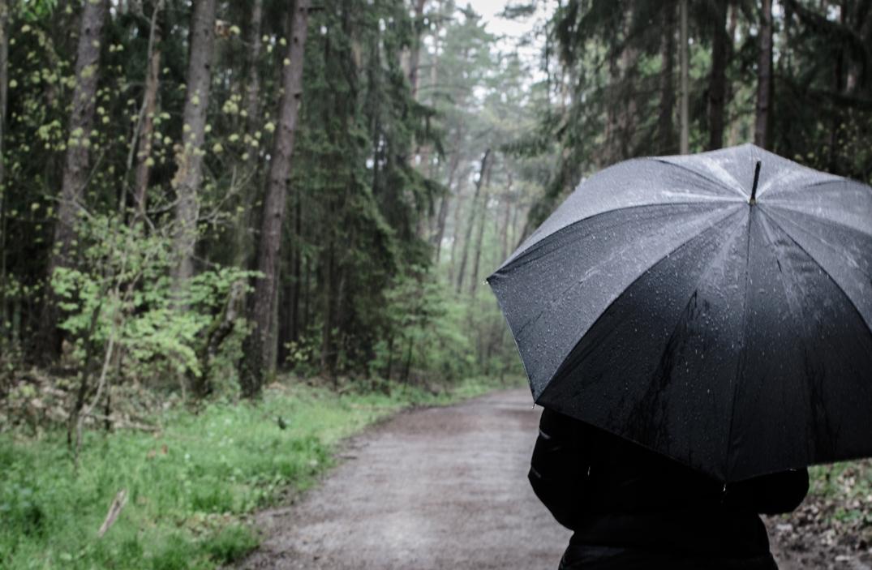 Regenschirm hinten